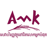 AMK Microfinance Institution