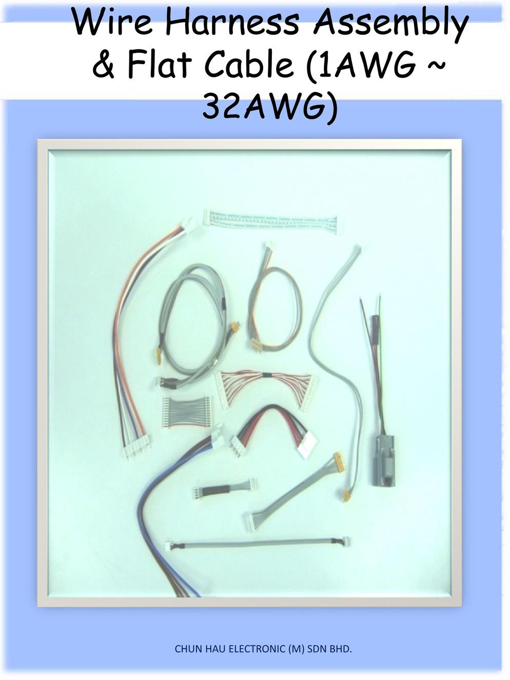 2160137?1436946799 about us chun hau electronic (m) sdn bhd perfect wire harness sdn bhd at bayanpartner.co
