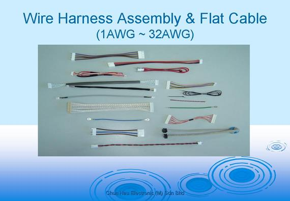 2160134?1436946791 about us chun hau electronic (m) sdn bhd perfect wire harness sdn bhd at bayanpartner.co