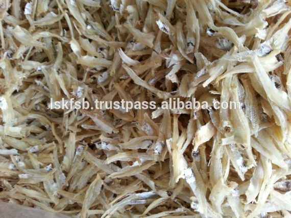 Dried Anchovy Fillet (White) 2Dried Anchovy Fillet (White)