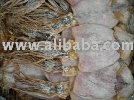 Dried Squid/Cuttlefish