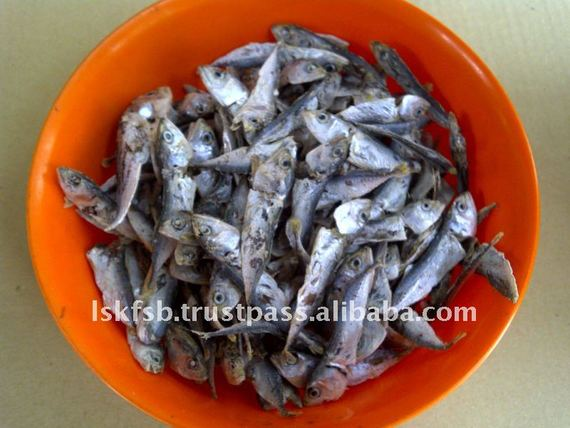 Dried Baby Mackerel
