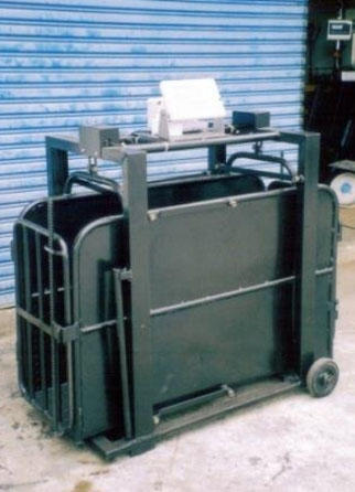 Animal Weigher Machine