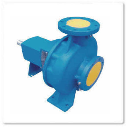 BG End Suction Pump