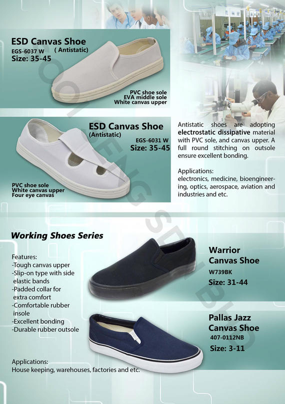 Antistatic & canvas shoes