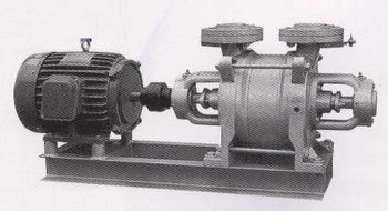 Liquid Ring Vacuum Pump SW-2~10