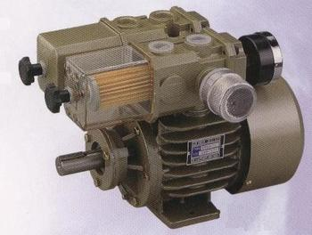 Single Vacuum Pump DS-3~8