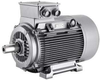 IE1, IE2, Inverter Duty Motors