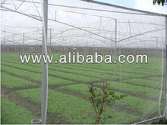 Agriculture Anti Insect Net