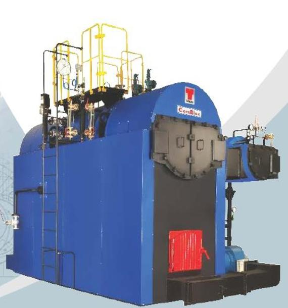 Compact Skid Mounted Biomass Steam Boiler