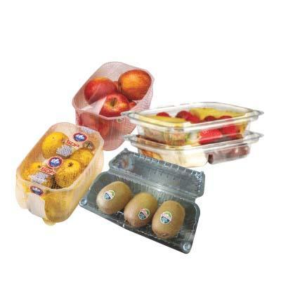OPS / PET Vegetable & Fruits Container / Clamshell
