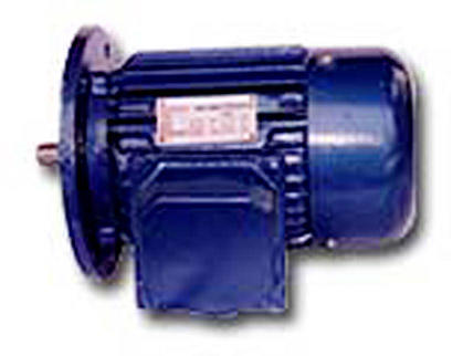 AC ELECTRIC MOTOR (B5)
