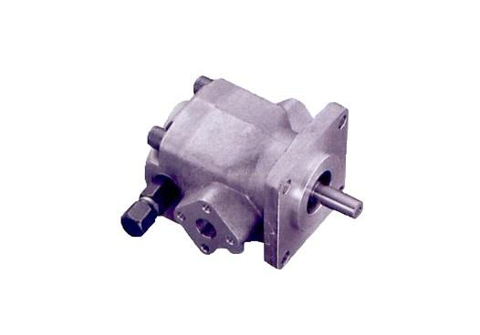 Gear pump with lift valves