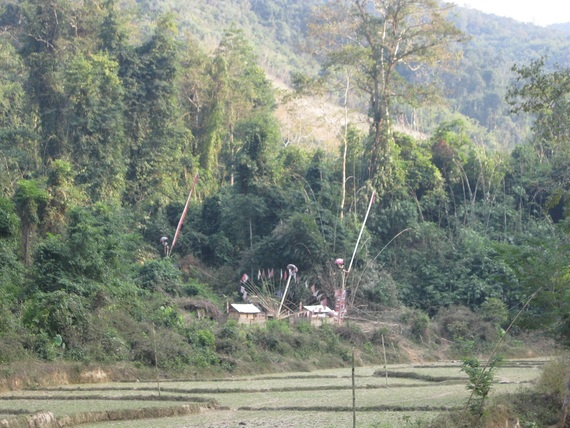 Tai Dam or Black Tai funeral place for twin infants 2
