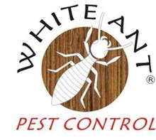 White Ant Pest Control Service