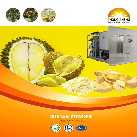 Durian powder FD