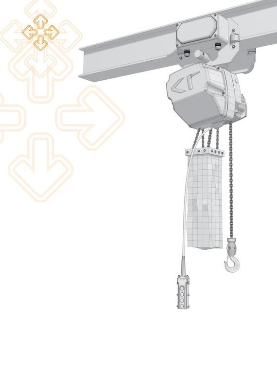 Chain Hoist,Cranes supplier,Cranes Accessories,Penang,Malaysia